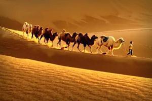 达瓦昆沙漠2.jpeg